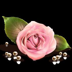 Bloemengroep